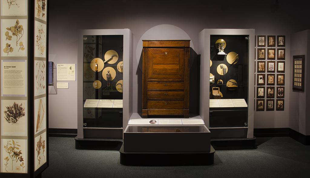 museum displays cases, wooden cabinet